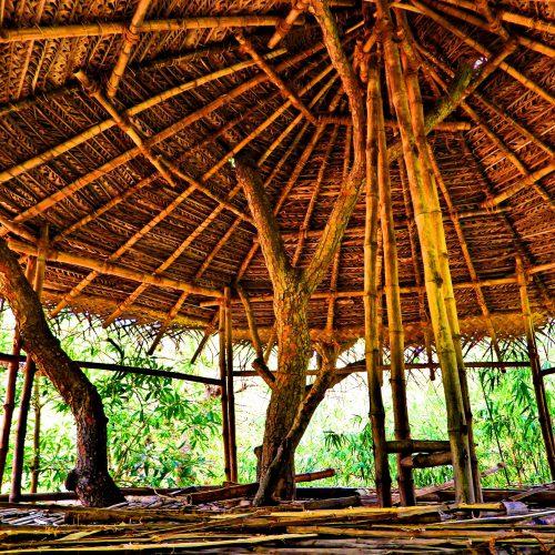 Bamboo yurt Workshop